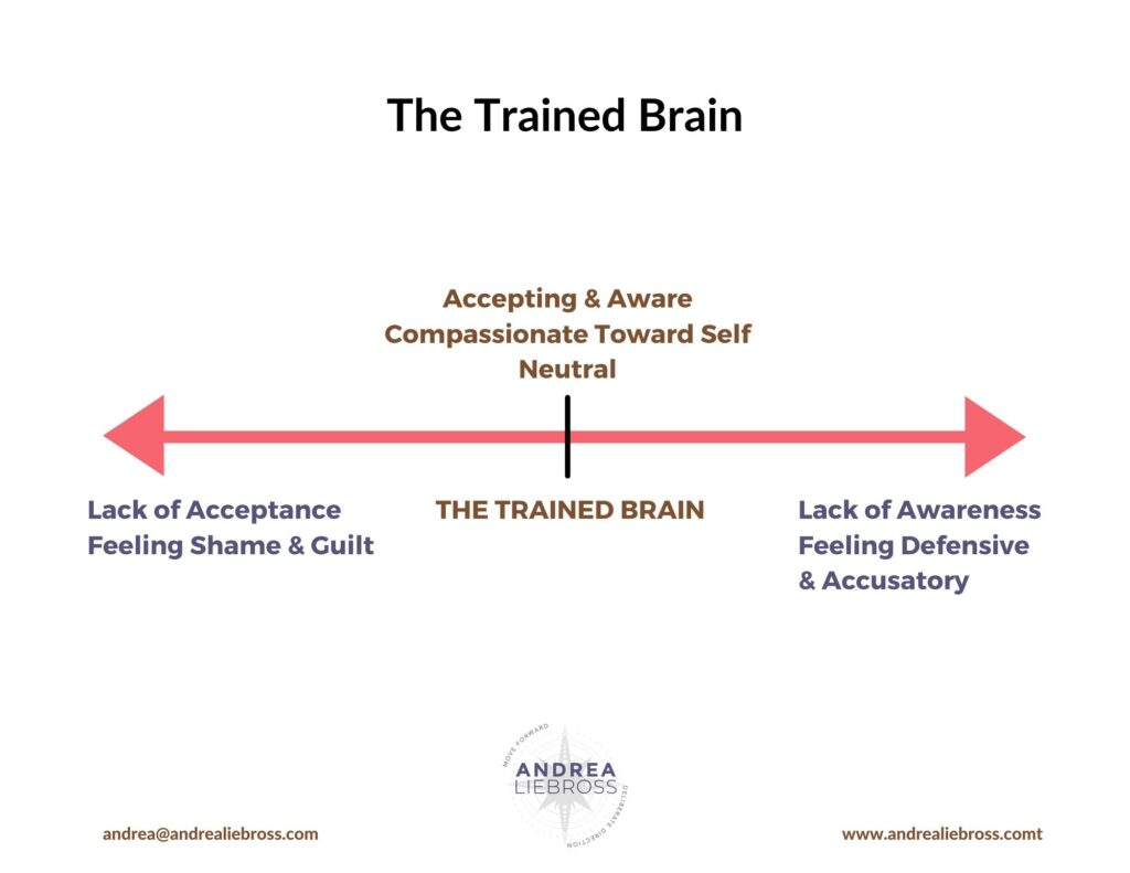 The Trained Brain Andrea Liebross Coaching