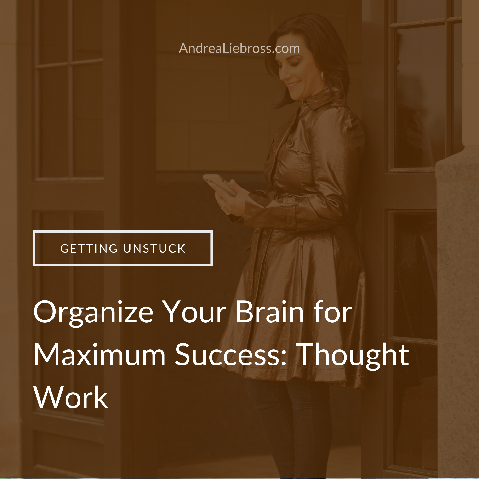 habits, thoughts, thought work, negative thoughts, feeling stuck, clarity, regret, journaling, brain dump, goals, organization, mindset, beliefsOrganize Your Brain for Maximum Success: Thought Work